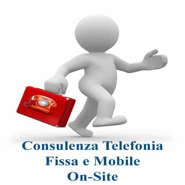 Consulenza-Telefonia-Fissa-e-Mobile